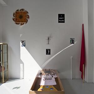 Trampoline Gallery